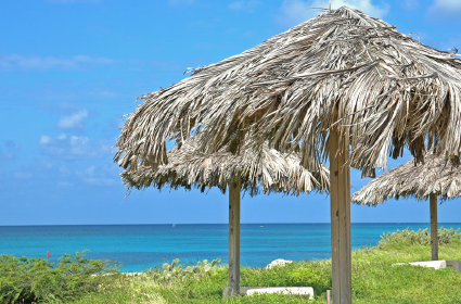 Diane Berkenfeld photo of straw umbrellas in Aruba with the ocean in the background
